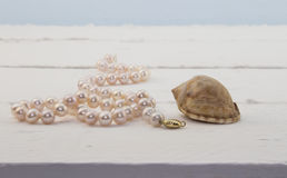 Colar cor-de-rosa da pérola no fundo de madeira branco com shell Fotos de Stock