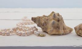 Colar cor-de-rosa da pérola no fundo de madeira branco com shell Imagens de Stock Royalty Free