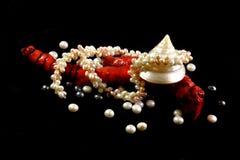 Colar, coral, p?rolas e escudos em um fundo preto imagem de stock royalty free