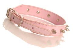 Colar de cão enchido cor-de-rosa Imagens de Stock Royalty Free