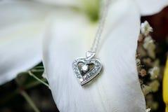 Colar de diamante Imagens de Stock
