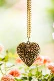 Colar Heart-shaped imagem de stock royalty free