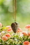 Colar Heart-shaped fotos de stock royalty free