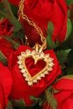 A colar no vermelho levantou-se Imagens de Stock Royalty Free