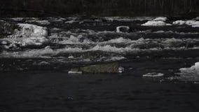 Colata del ghiaccio della corrente di primavera video d archivio