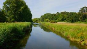 Colaton罗利 河中水獭德文郡 免版税库存照片