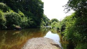 Colaton罗利 河中水獭德文郡 库存照片