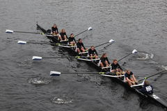 Colby College  Women's Crew Royalty Free Stock Photography