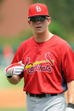 Colby Rasmus - St. Louis Cardinals Royalty Free Stock Image