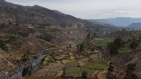 Colca峡谷 库存照片