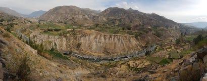 Colca峡谷 免版税库存图片