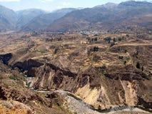 Colca峡谷 免版税库存照片