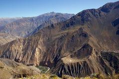 colca Перу каньона Стоковое Фото