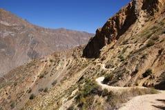 colca Перу каньона Стоковое Изображение