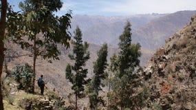 colca Перу canion Стоковые Изображения