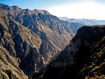 Colca Canyon In Peru Royalty Free Stock Image