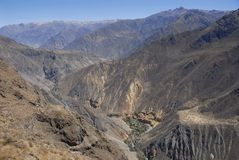 Colca canyon, Peru Royalty Free Stock Photos