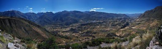 Colca Canyon of Peru royalty free stock image