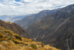 Colca Canyon, Peru Panorama royalty free stock photography