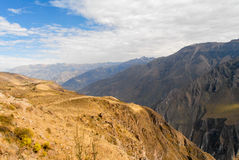 Colca Canyon, Peru stock photo