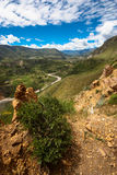 Colca Canyon. Peru. The second worlds deepest canyon Stock Image