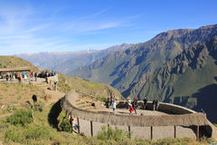 Colca Canyon, Peru Royalty Free Stock Image