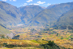 Colca Canyon, Peru,South America. Stock Images