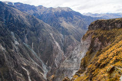 Colca Canyon, Peru Royalty Free Stock Photo
