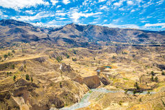 Colca Canyon, Peru,South America.  Incas to build Farming terraces with Pond and Cliff. Stock Images