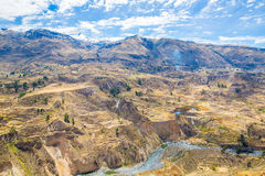 Colca Canyon, Peru,South America.  Incas to build Farming terraces with Pond and Cliff. Royalty Free Stock Image