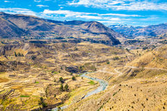 Colca Canyon, Peru,South America.  Incas to build Farming terraces with Pond and Cliff. Royalty Free Stock Photos
