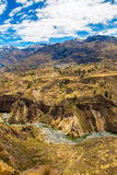 Colca Canyon, Peru,South America. Incas to build Farming terraces with Pond and Cliff. One of deepest canyons in world Stock Image