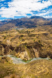 Colca Canyon, Peru,South America. Incas to build Farming terraces with Pond and Cliff. One of deepest canyons in world Royalty Free Stock Photography
