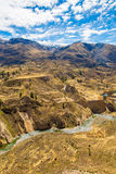 Colca Canyon, Peru,South America. Incas to build Farming terraces with Pond and Cliff. One of deepest canyons in world Stock Photography