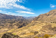 Colca Canyon, Peru,South America. One of the deepest canyons in the wor Stock Image