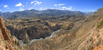 Colca Canyon. In Peru with terasses for agriculture Royalty Free Stock Image