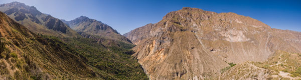 Colca canyon on the trail panorama shot Royalty Free Stock Images