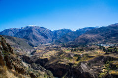 Colca Canyon Views Royalty Free Stock Images
