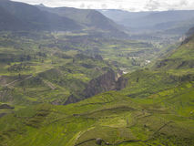 Colca dolina, Arequipa, Peru. Obrazy Royalty Free