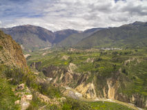 Colca dolina, Arequipa, Peru. zdjęcie stock