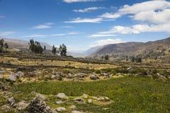 Colca dolina, Arequipa, Peru Obrazy Royalty Free