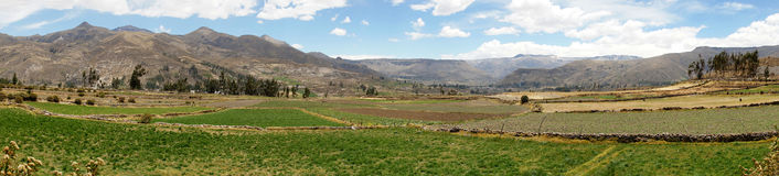 Colca dolina, Arequipa, Peru Obraz Stock