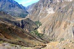Colca jaru dolina Fotografia Stock