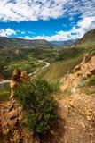 Colca kanjon Fotografering för Bildbyråer