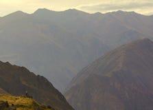 Colca kanjonsolnedgång Fotografering för Bildbyråer