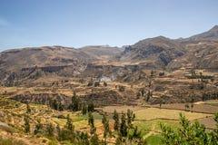 colca Peru dolina Obrazy Royalty Free