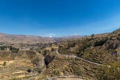colca Peru dolina Zdjęcie Stock