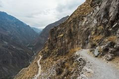 Colca river trail. Winding hiking trail descending to Colca River Canyon in Peru stock images