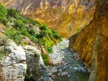 Colca rzeka na dnie jar Zdjęcie Royalty Free