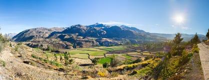 Colca-Schlucht, Peru, Südamerika. Inkas, zum der Landwirtschaft von Terrassen mit Teich und Clif aufzubauen lizenzfreie stockfotografie